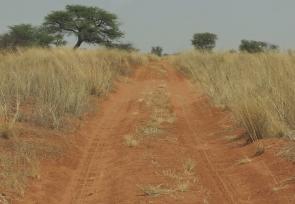 route de sable