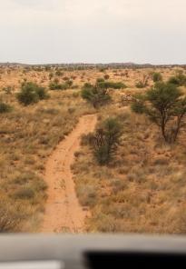 route des dunes
