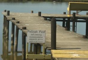Pelican post