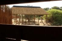 Nossob - construction du nouvel hide