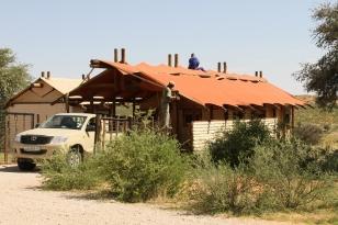 Kalahari Tented Camp étêté, No 1, ma tente