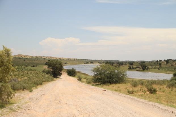 Aoub dry river bed... innondée !