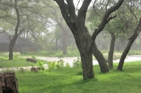camp - pluie