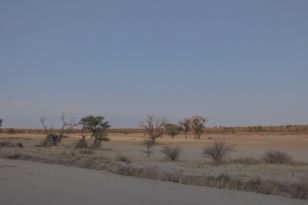 paysage - vue du No 12