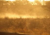 dust /tempête